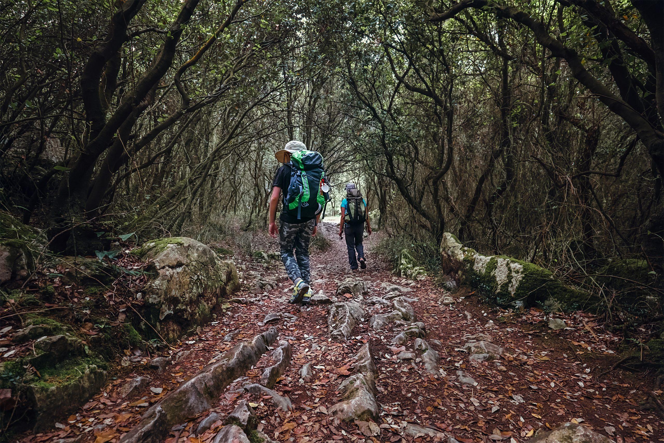 Camino de Santiago desde Tui