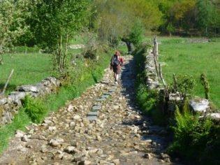Last 100 Kms Camino de Santiago