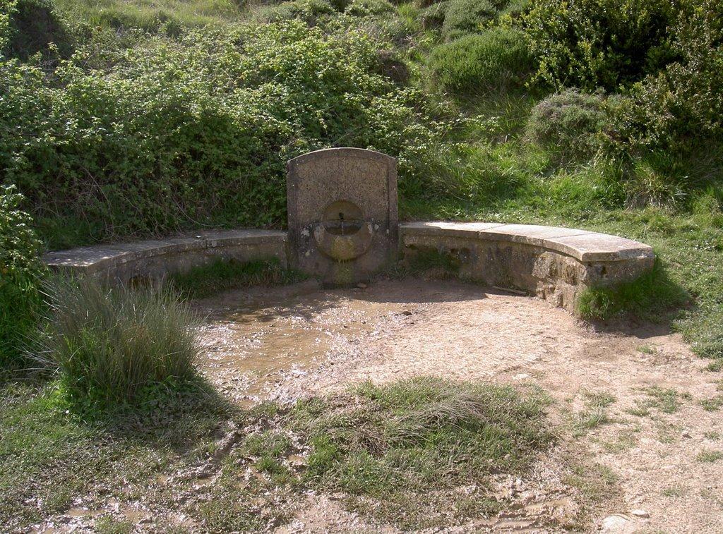 Fuente-de-reniega